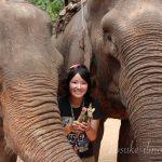 27歳の誕生日。僕の妻は象使いになった。〜最終話〜